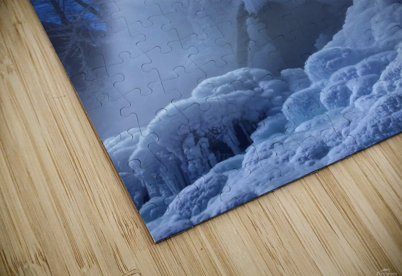 Frozen in the moonlight HD Sublimation Metal print