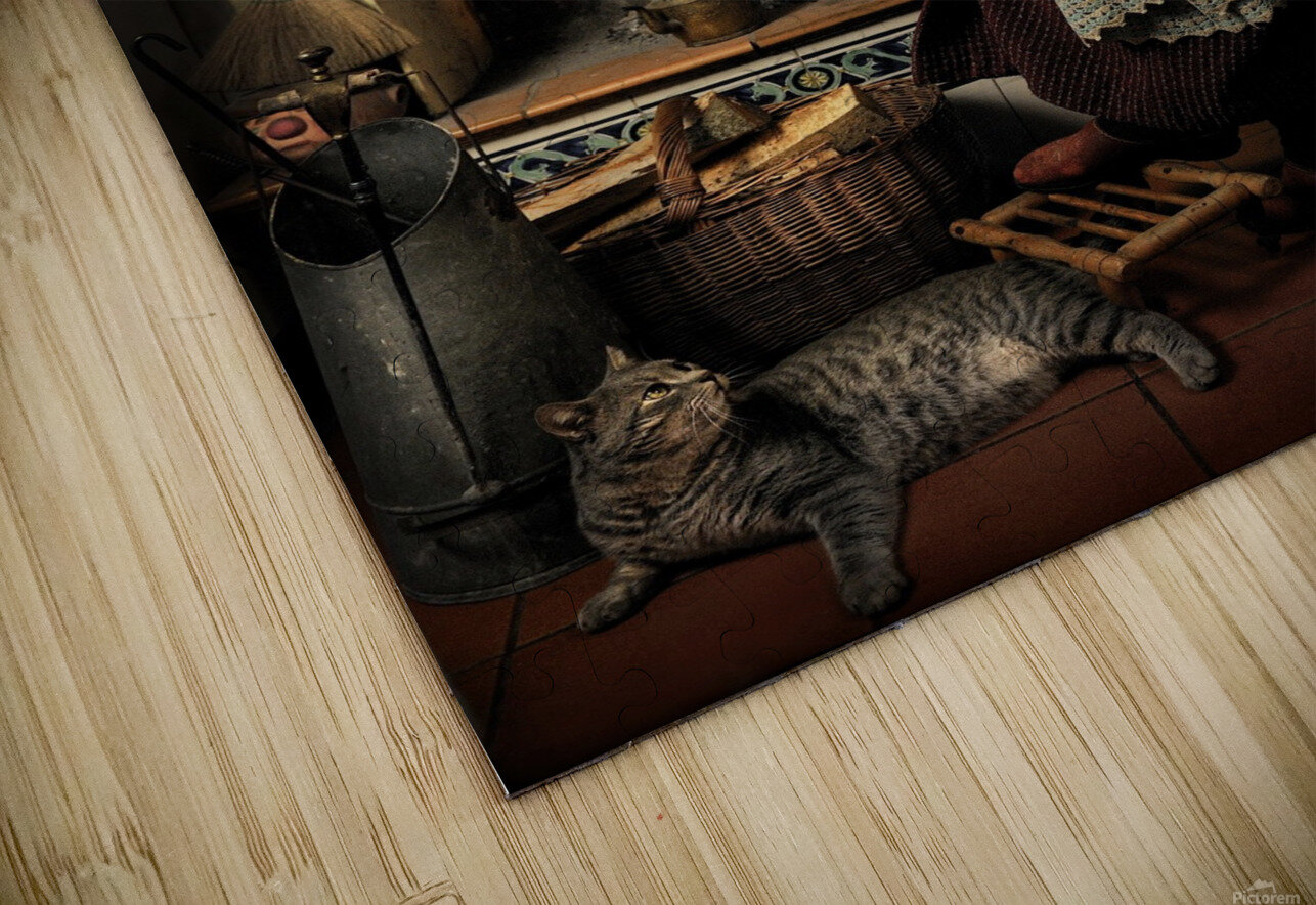 Dear Cat.... Once upon a time... HD Sublimation Metal print