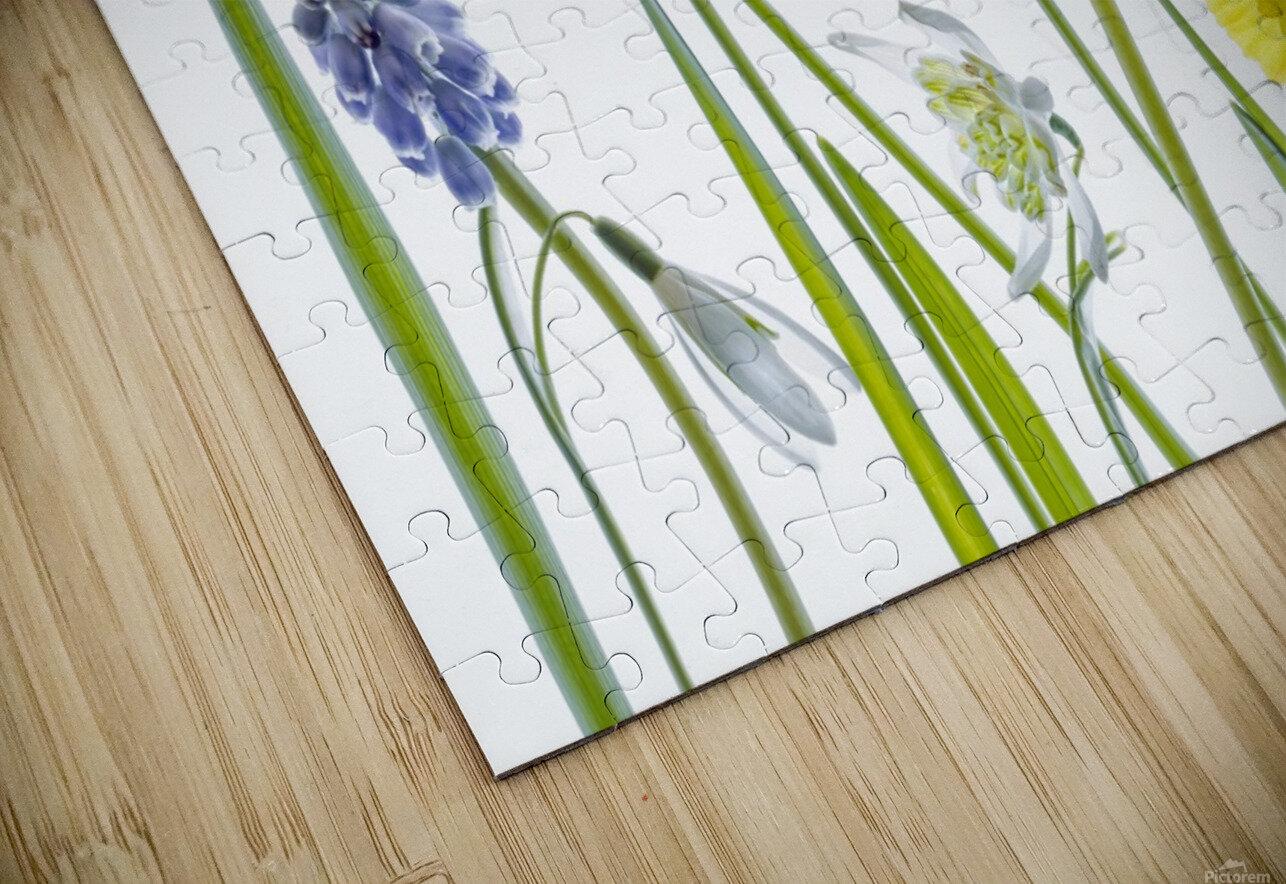 Spring HD Sublimation Metal print