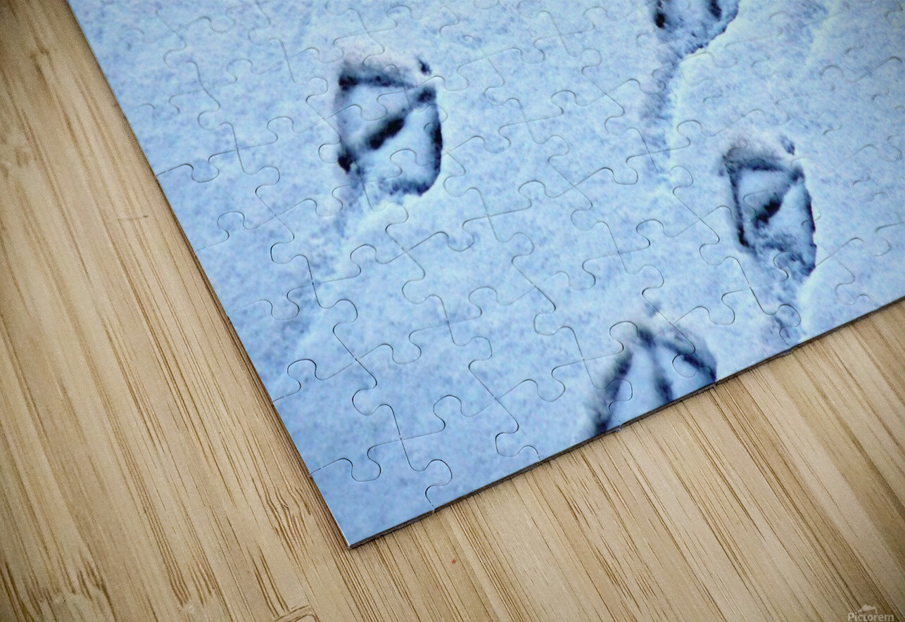 Whos following HD Sublimation Metal print