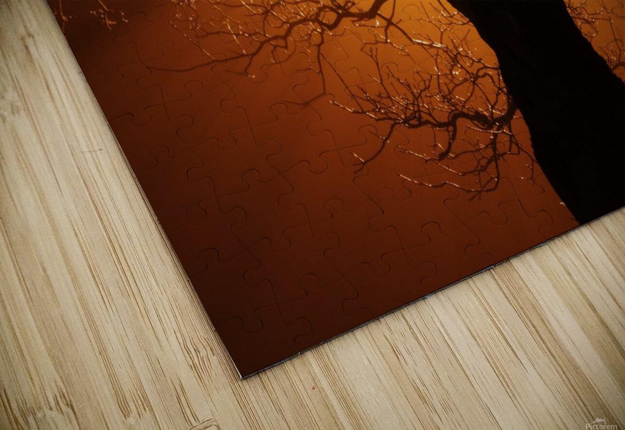 abstract sun tree HD Sublimation Metal print