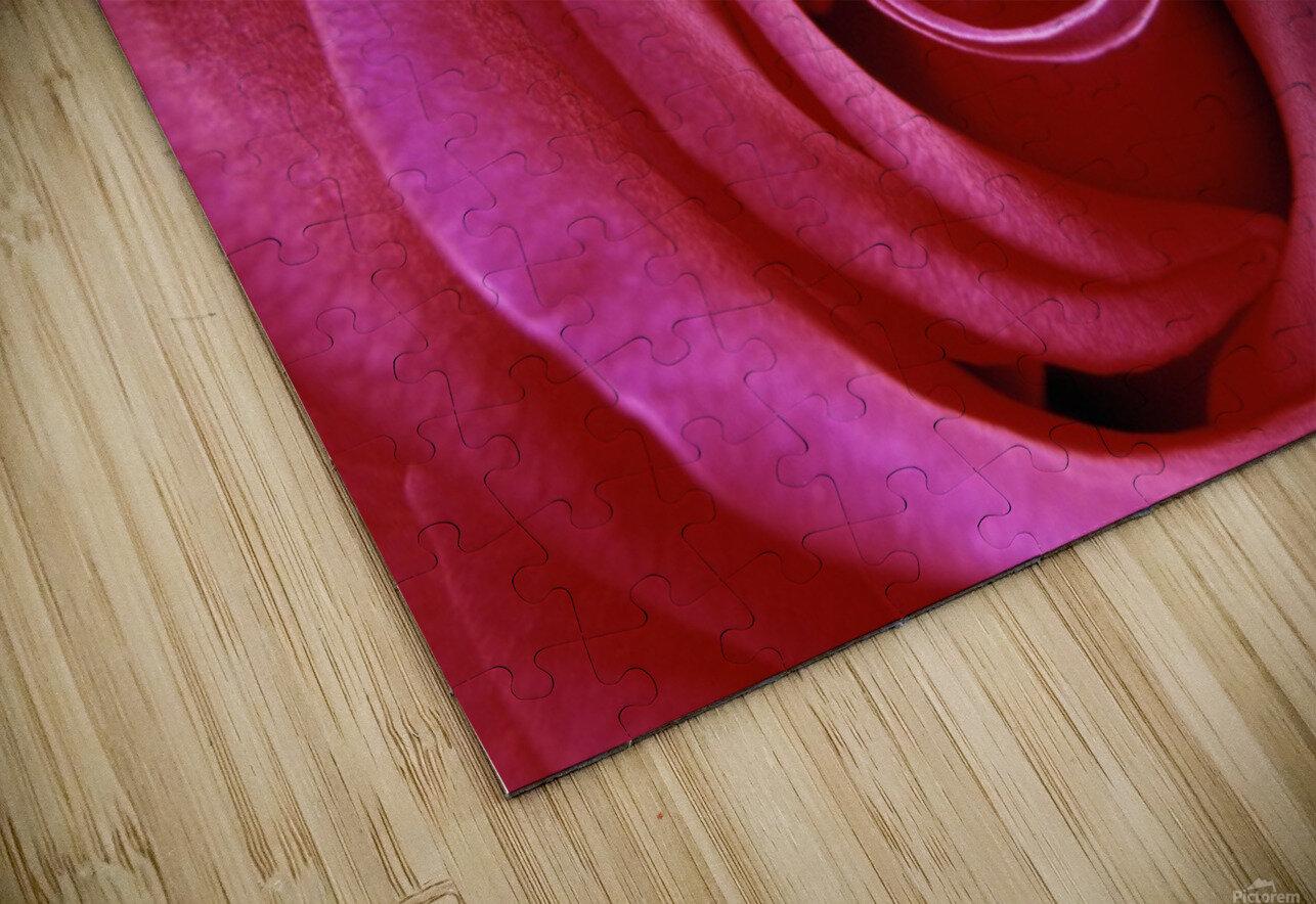 Rose Blossom HD Sublimation Metal print