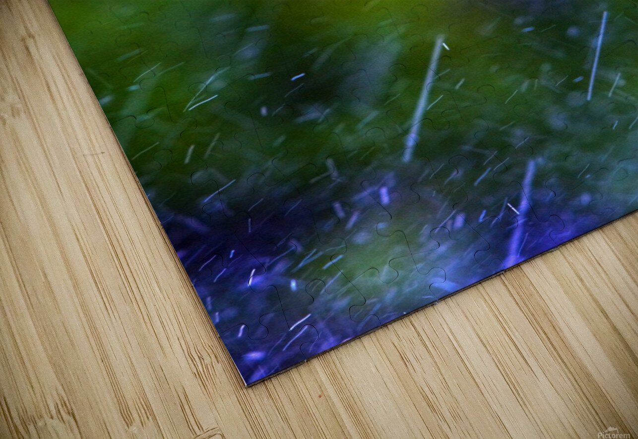 Rain Falling HD Sublimation Metal print