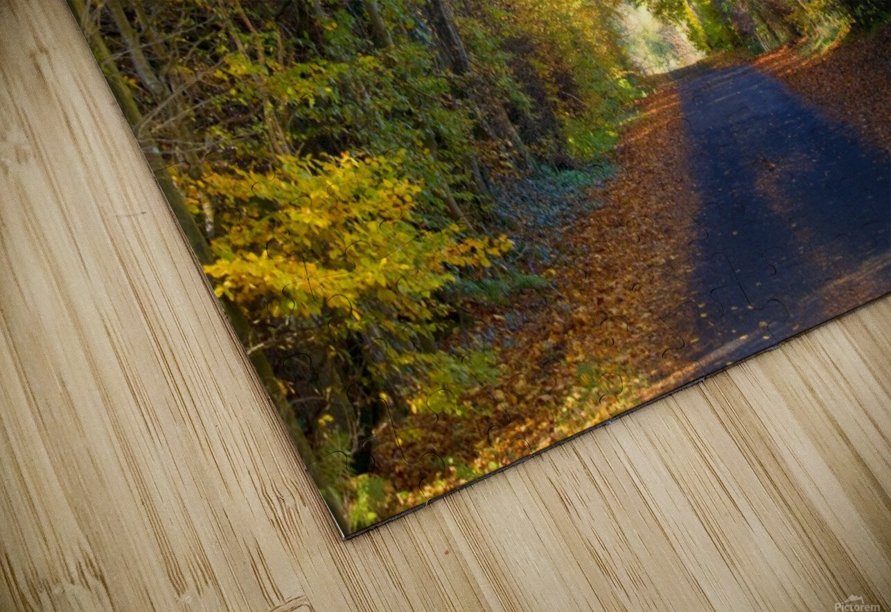 Rural Road, Argyll And Bute, Scotland HD Sublimation Metal print