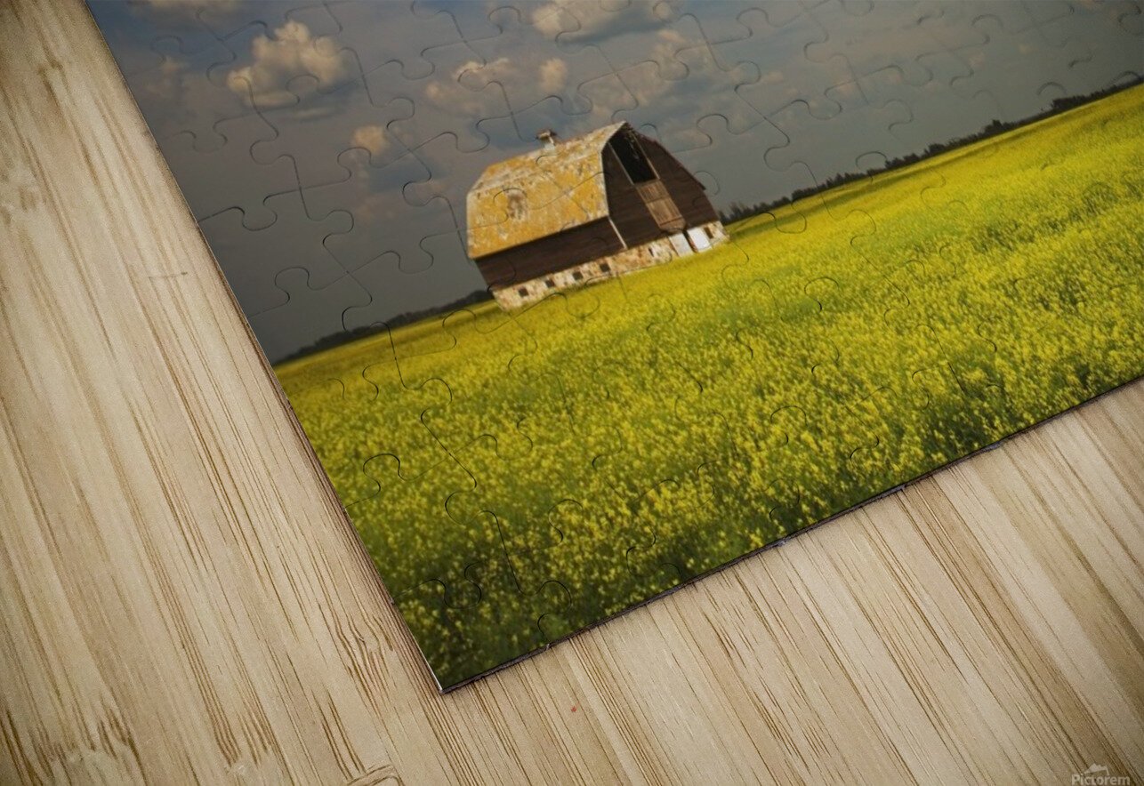 Alberta, Canada; An Old Barn In A Field HD Sublimation Metal print