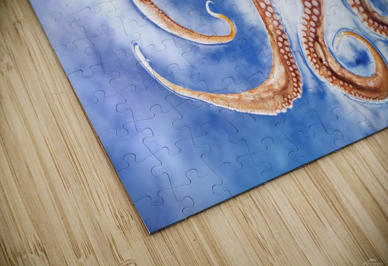 An octopus with blue sky and cloud in the background HD Sublimation Metal print
