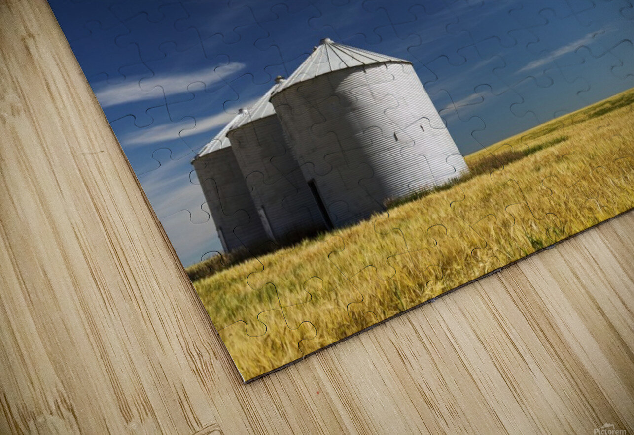 Large metal grain bins in a barley field with blue sky and wispy clouds; Acme, Alberta, Canada HD Sublimation Metal print