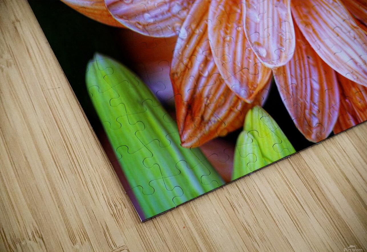 FPS-0058 HD Sublimation Metal print