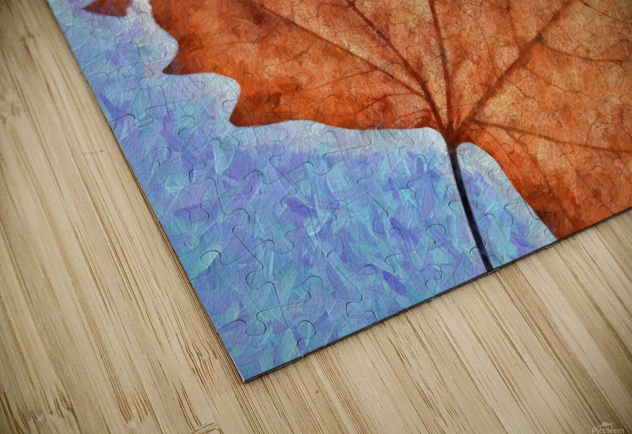 Autumn Leaves Macro 3 Abstract 3 HD Sublimation Metal print