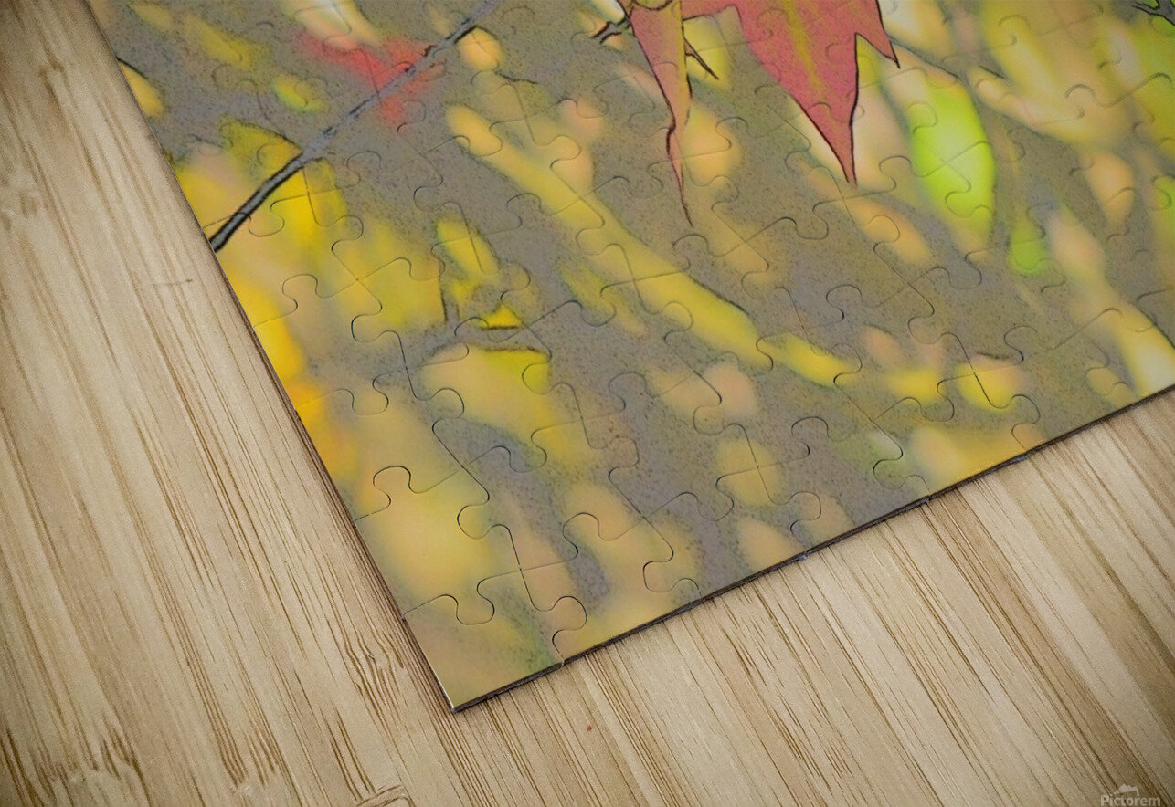 Leaves Macro 5 Abstract 2 HD Sublimation Metal print