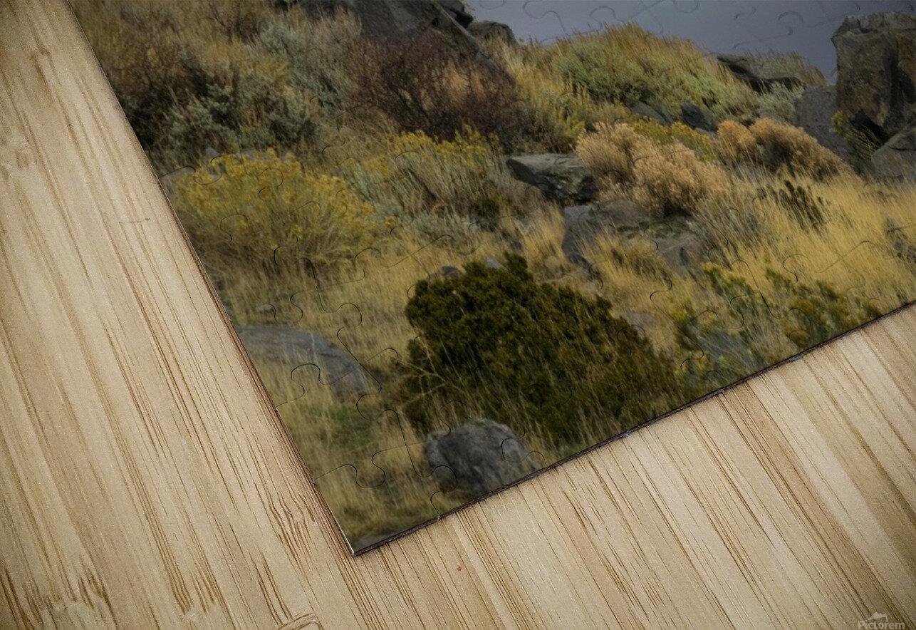 Desert Flyer HD Sublimation Metal print