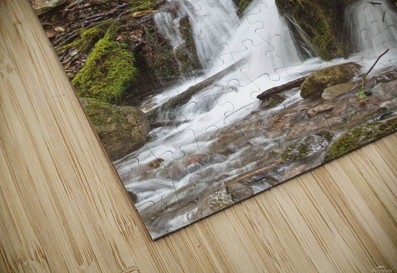 Water flowing through tree roots at Opal Creek Wilderness, Oregon HD Sublimation Metal print