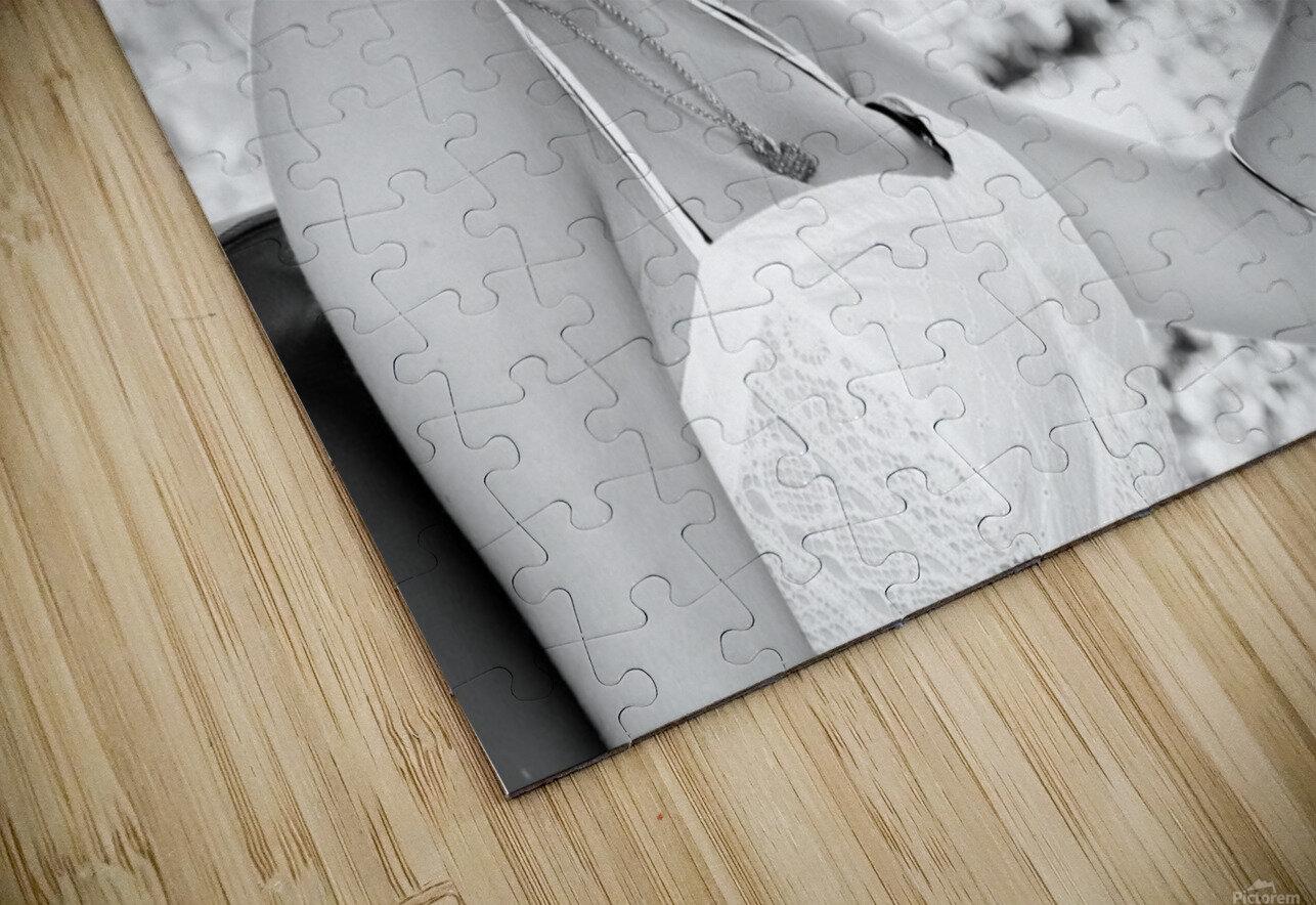 ©Lou Freeman Dark Glamour & Beauty Black & White    77 HD Sublimation Metal print