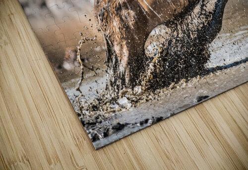 Kudu jump jigsaw puzzle