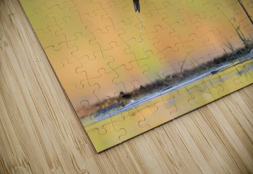 Morning Catch jigsaw puzzle