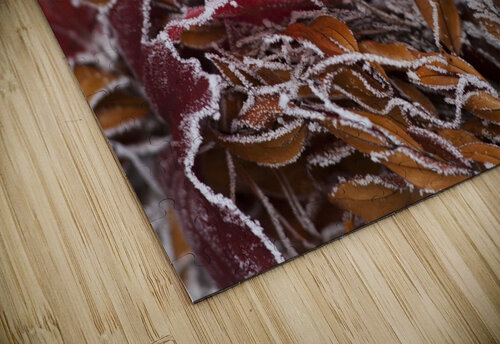 Hoarfrost covers holiday decorations on a wreath, Christmas season; Minnesota, United States of America jigsaw puzzle