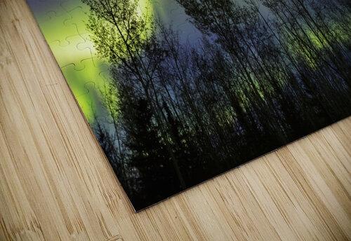 Aurora borealis over silhouetted trees; Alaska, United States of America jigsaw puzzle
