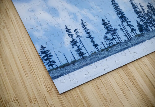 A bird flies above trees under a cloudy sky and fog on the coast of Resurrection Bay, South-central Alaska; Seward, Alaska, United States of America jigsaw puzzle