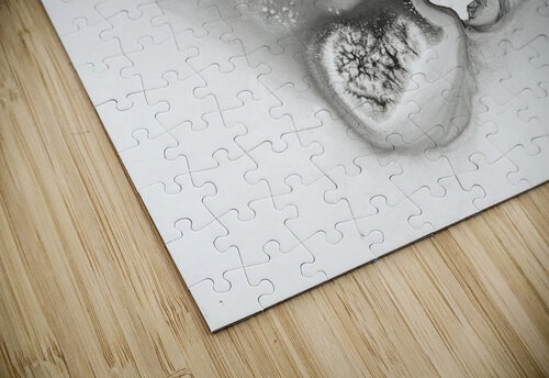 Illustration of a bird's face surrounded by mottled textures and abstract jigsaw puzzle