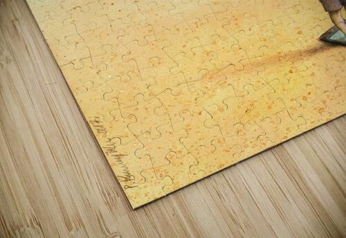 bath jigsaw puzzle