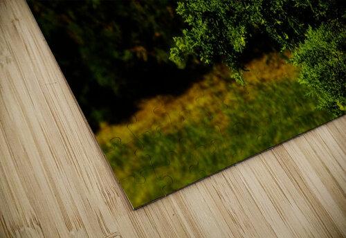 sofn-30401FB1 jigsaw puzzle