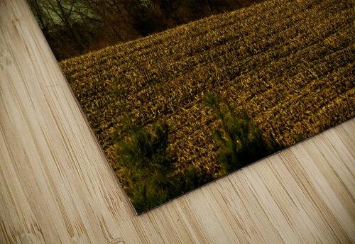 sofn-840D8D25 jigsaw puzzle