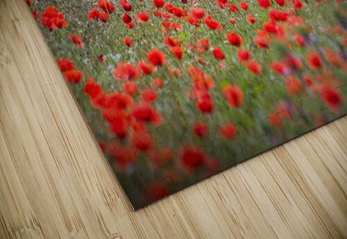 Red district jigsaw puzzle