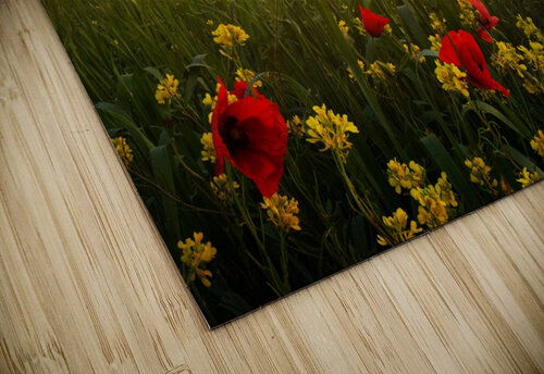 Blooming Tuscany jigsaw puzzle