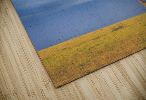 Colors of freedom jigsaw puzzle