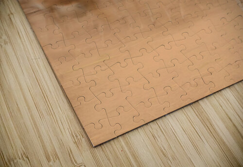 Black Bucks jigsaw puzzle