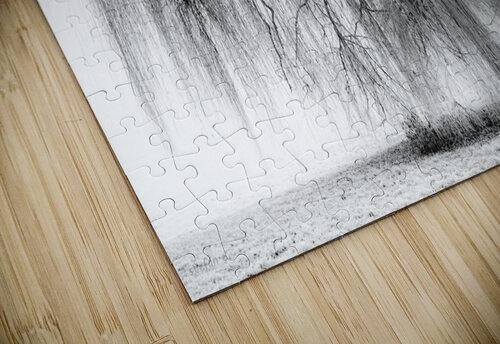 Rapunzel jigsaw puzzle