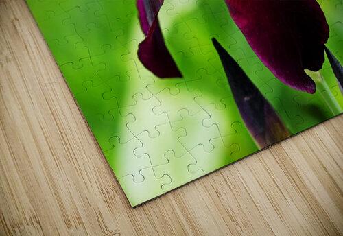 Bold And Beautiful jigsaw puzzle