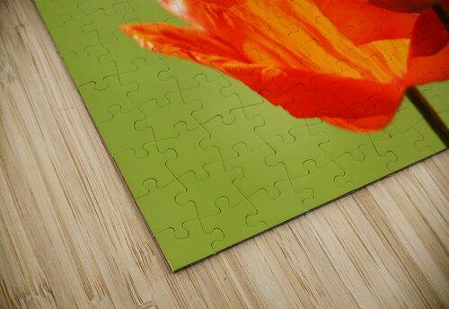 Kiss The Sun jigsaw puzzle