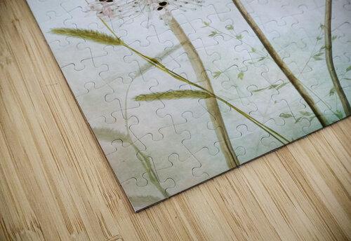 Allium jigsaw puzzle