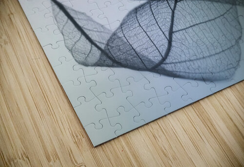 Curvaceousness jigsaw puzzle