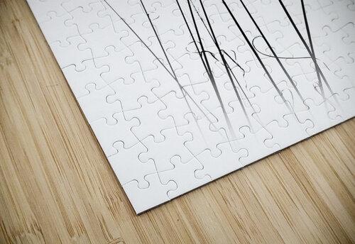a sabbatical jigsaw puzzle