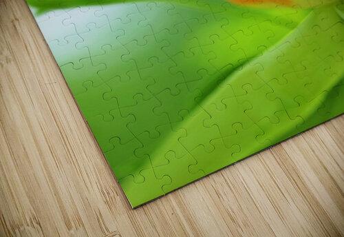 Yellow Poplar Flower jigsaw puzzle