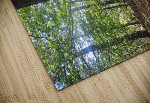 Landscape (60) jigsaw puzzle