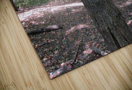 Landscape (166) jigsaw puzzle