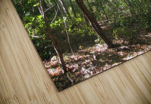 Landscape (176) jigsaw puzzle
