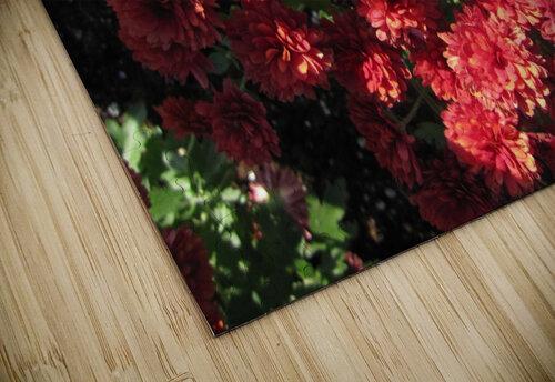Flower (4) jigsaw puzzle