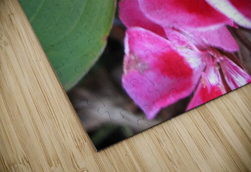 Flower (2) jigsaw puzzle