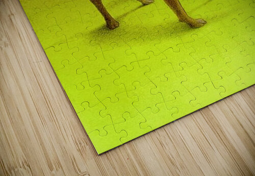 PawelKuczynski54 jigsaw puzzle