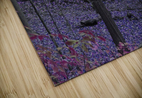 Purple Forest jigsaw puzzle