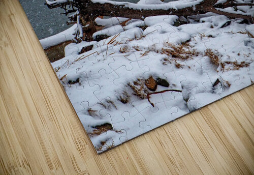 Indian River Bridge with Driftwood and Snow jigsaw puzzle
