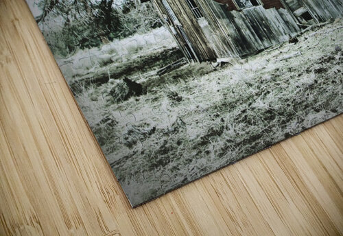 Abandoned Homestead jigsaw puzzle