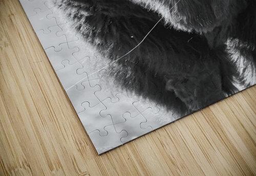 7893 - Buffalo jigsaw puzzle