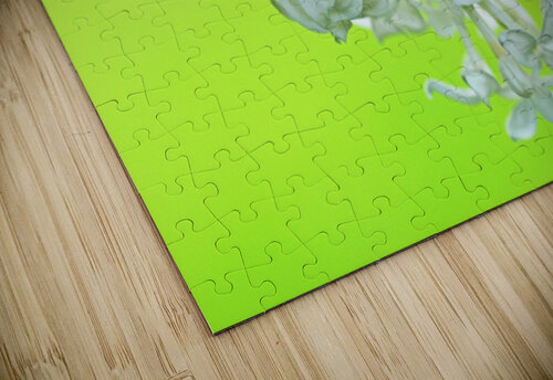 Cool White Lilac On Lemon Lime jigsaw puzzle