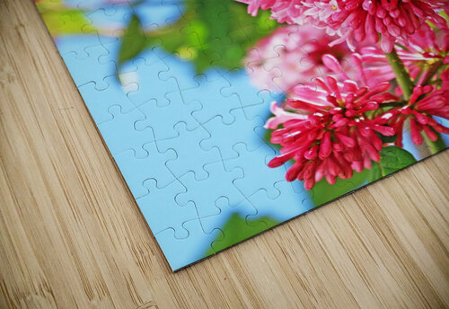 Sweet Side Of Red I jigsaw puzzle