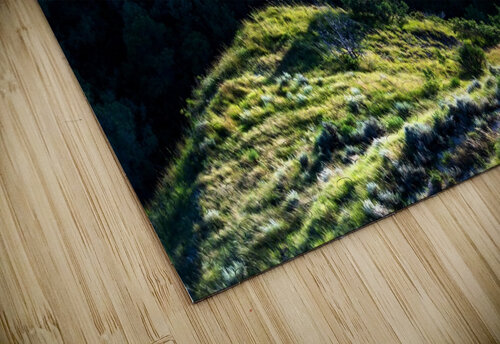 Lonesome Tree jigsaw puzzle